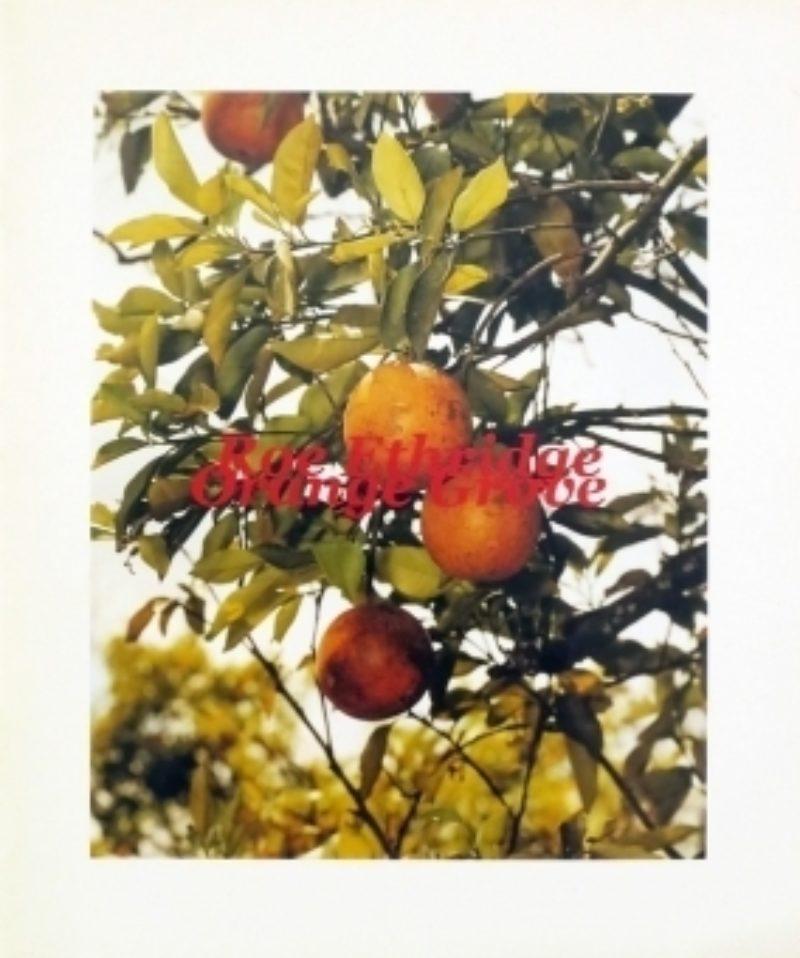 Image of Roe Ethridge: Orange Grove