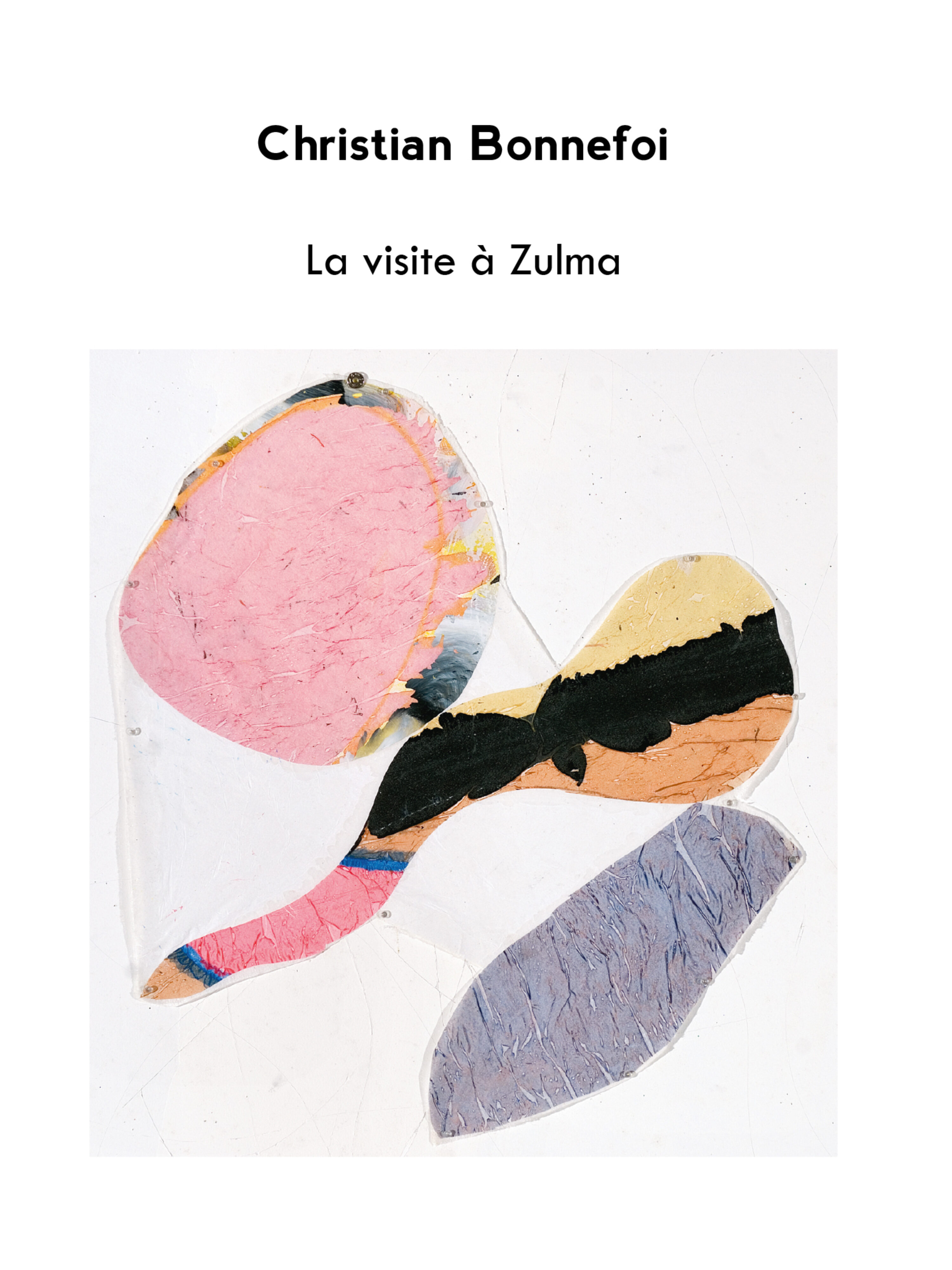 Image of the front cover of La visite à Zulma